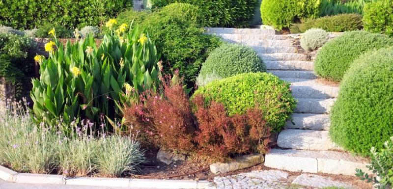 Aménagement jardin en pente : escaliers paysagers
