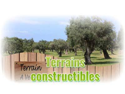Retrouvez les dernières annonces terrains & maison + terrains